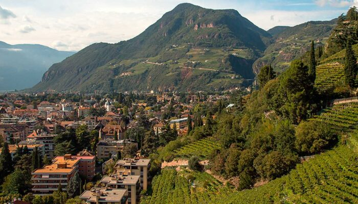 Transfer Star: Экскурсии по Больцано из Вероны